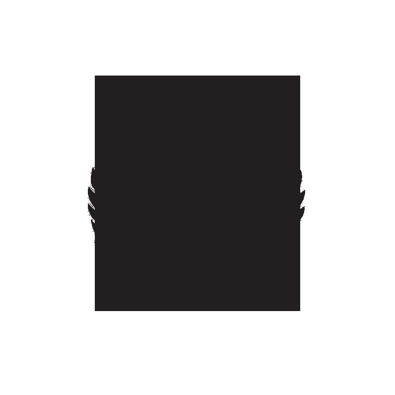 Aurelia Futsal